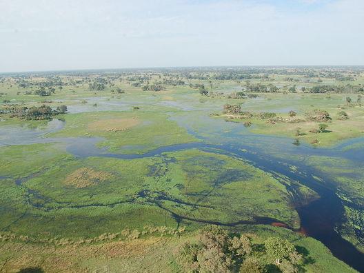 Cropped 1200px okavango delta  botswana  2674364913